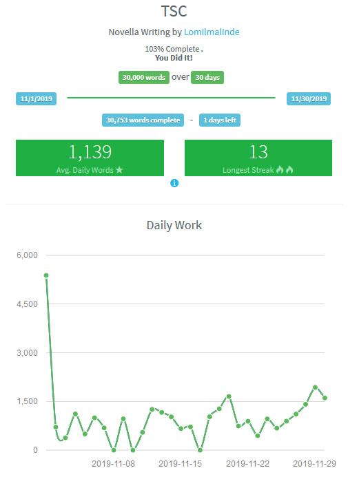 NaNoWriMo 2019 results